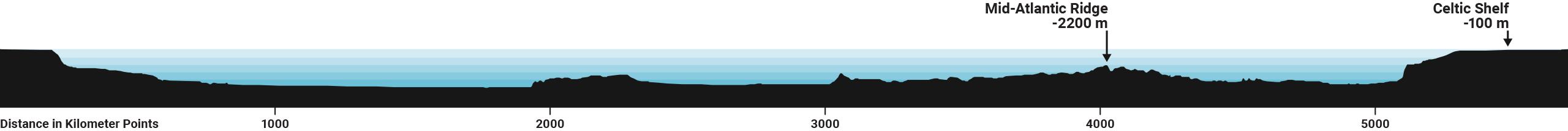 transatlantic seabed profile